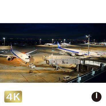1028056 ■ 東京 羽田空港