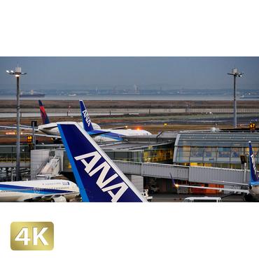 1028051 ■ 東京 羽田空港