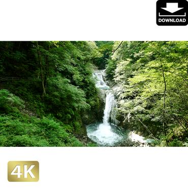 2010015 ■ 西沢渓谷 七ツ釜五段の滝