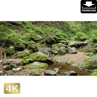 2037044 ■ 御岳山 ロックガーデン