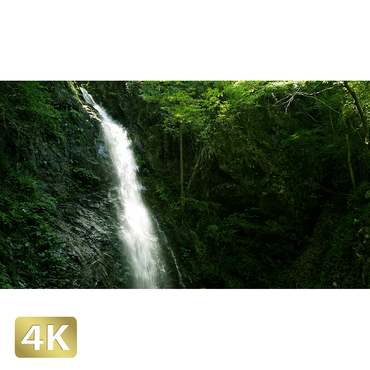 1005003 ■ 秋川渓谷 払沢の滝