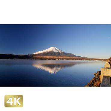 1018061 ■ 富士山 山中湖
