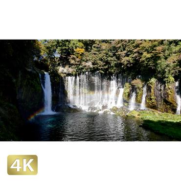 1015035 ■ 静岡 白糸の滝
