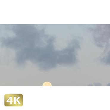 1026004 ■ 黒島 月