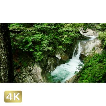 1010013 ■ 西沢渓谷 貞泉の滝