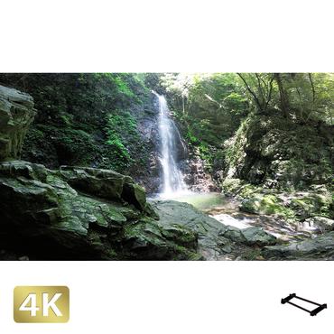 1005020 ■ 秋川渓谷 払沢の滝