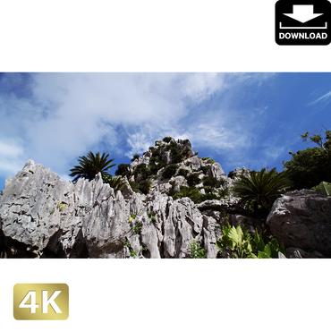 2042128 ■ 沖縄 大石林山
