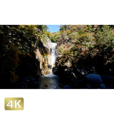 1015004 ■ 昇仙峡 紅葉 仙娥滝