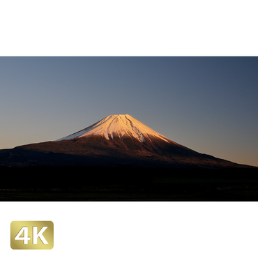1018058 ■ 富士山 朝霧高原