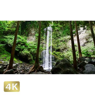 1010029 ■ 静岡 夕日の滝