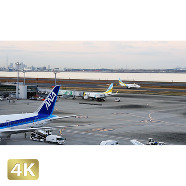 1028045 ■ 東京 羽田空港