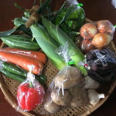 野菜パックL