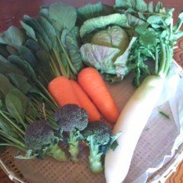 野菜パックS