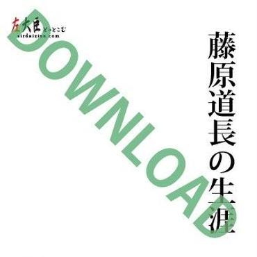 藤原道長の生涯 ダウンロード版