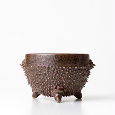 植木鉢:圭介窯【トゲモノ】KG-056