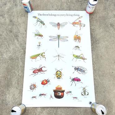 SMOKEY BEAR Education Posterスモーキーベア エデュケーションポスター/181126-1