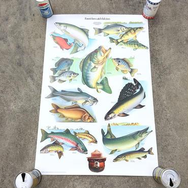 SMOKEY BEAR Education Posterスモーキーベア エデュケーションポスター/181126-2