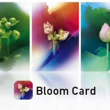 Bloom Card / 5枚セット