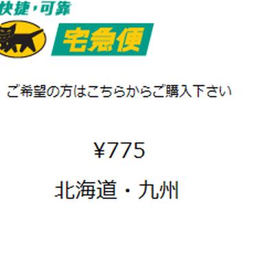 宅急便コンパクト(北海道・九州)(箱代含む)