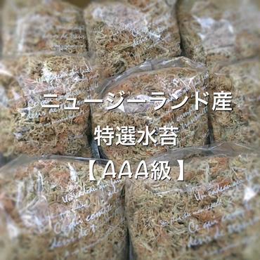 AAA級   特選 水苔 25g
