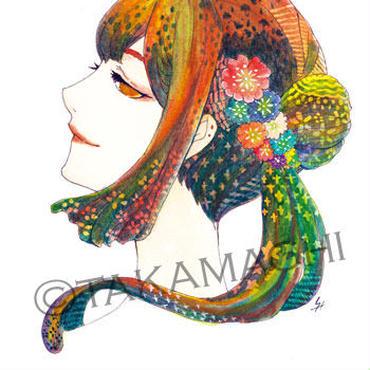 【プリムラ】ポストカード