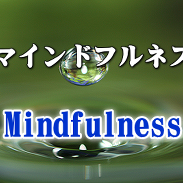 苦悩をすり抜ける瞑想法~マインドフルネス V.d.s.の中心的技法 【ダウンロード販売】