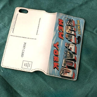 """Pictorial Wonderland of America"" iPhone6/6s Leather Case, ""Buffalo"""