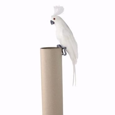 NATURA DECO BIRD 【M】