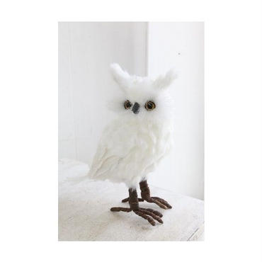 COVENT GARDEN (コベントガーデン)ホワイト フェザーオウル