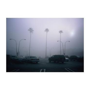 Fog  the  LA