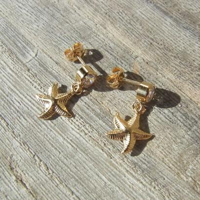Zirconia × Starfish Pierce
