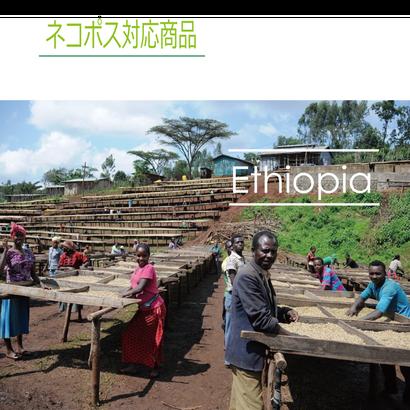 エチオピア フンダ・オリ ナチュラル 100g