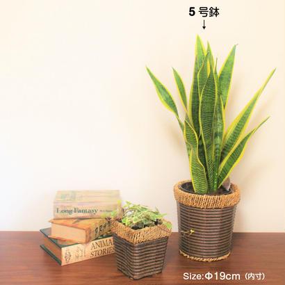 【5号】らくらく鉢カバー  本体価格¥480 税込卸価格⇒