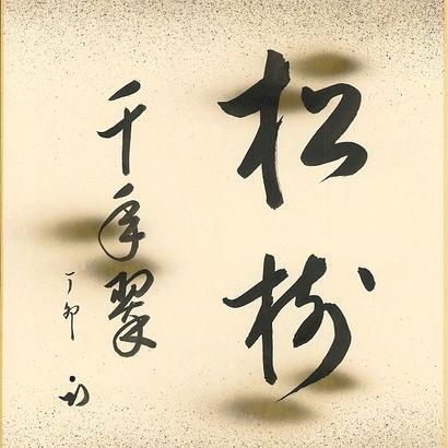 色紙・松樹千年翠(久田家12代 尋牛斎宗也)/ 216