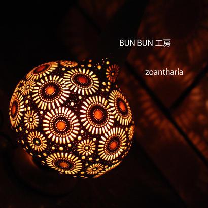 ひょうたんランプ---zoantharia