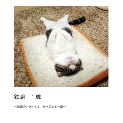 【送料無料】鉄朗 1歳(フォトブック)