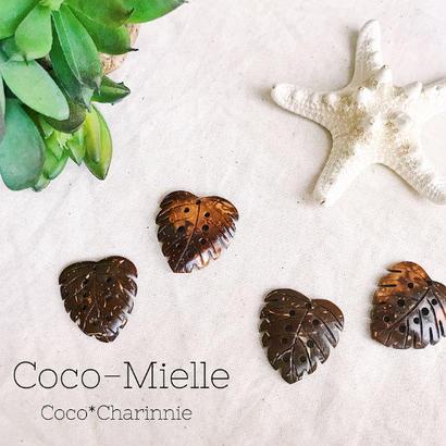 """""""Coco- Mielle"""""""