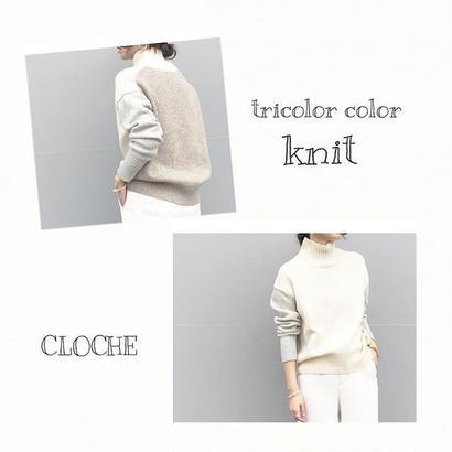 tricolore turtle knit
