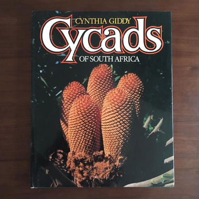 CYCADS OF SOUTH AFRICA