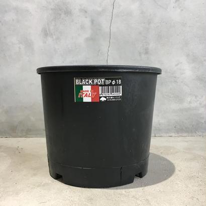 black  pot (made in italy ) φBP18