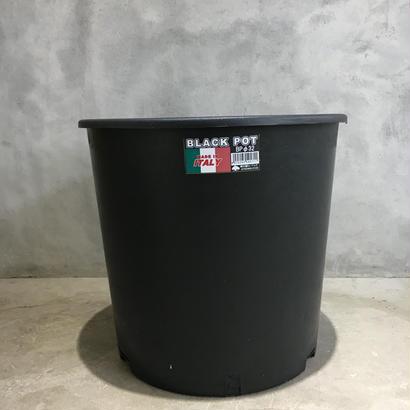 black  pot (made in italy ) φBP32