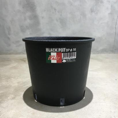 black  pot (made in italy ) φBP16