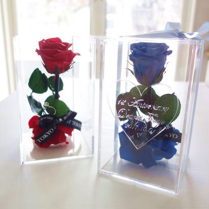 """message ROSE  """"une bague"""" 名入れギフト♡美女と野獣♡一本のバラにリングを添えて"""