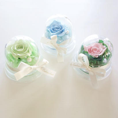 "NATURAL ""flower DOME""  小さなフラワードーム♡3color"