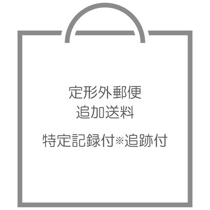 特定記録付郵便▷追加料金