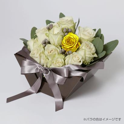 Kikko(white-トパーズ-Nov. 11月)