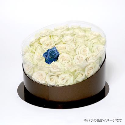 En(white-サファイア-Sep. 9月)
