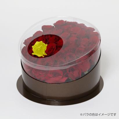 En(red-イエロートパーズ-Nov. 11月)