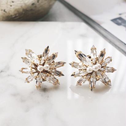 leaf bijou pierce,earring