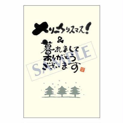 メッセージカード クリスマス 08-0308 1セット(10枚)